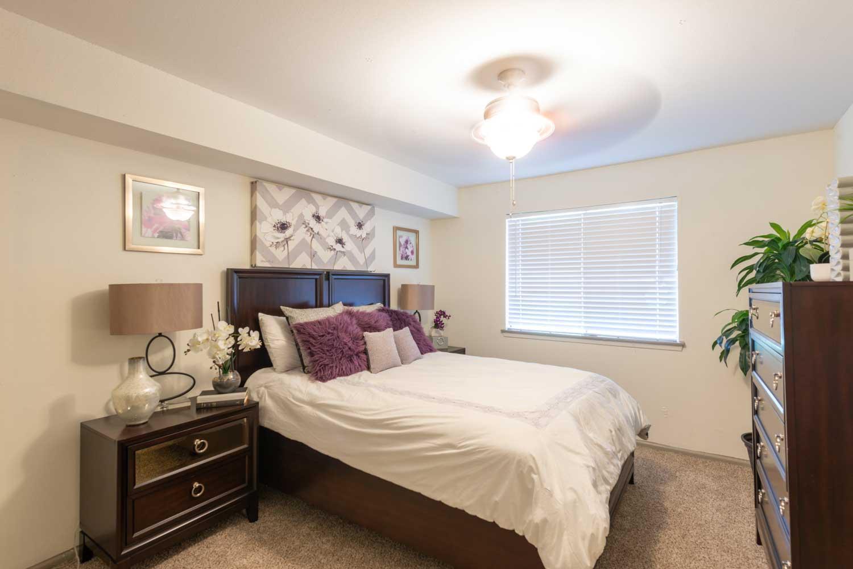 2320 Cherry Brook Lane #FP-1BR/1BA, Pasadena, TX - 799 USD/ month