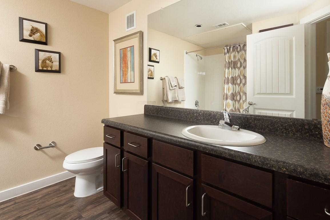 11650 Alamo Ranch Parkway #1221 - 2155USD / month