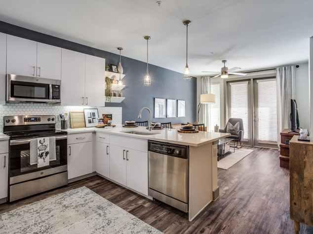 195 W Davis Street #02-552, Dallas, TX - 1,581 USD/ month