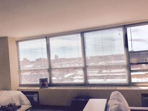 3550 N Lake Shore Dr #828, Chicago, IL - $1,100 USD/ month