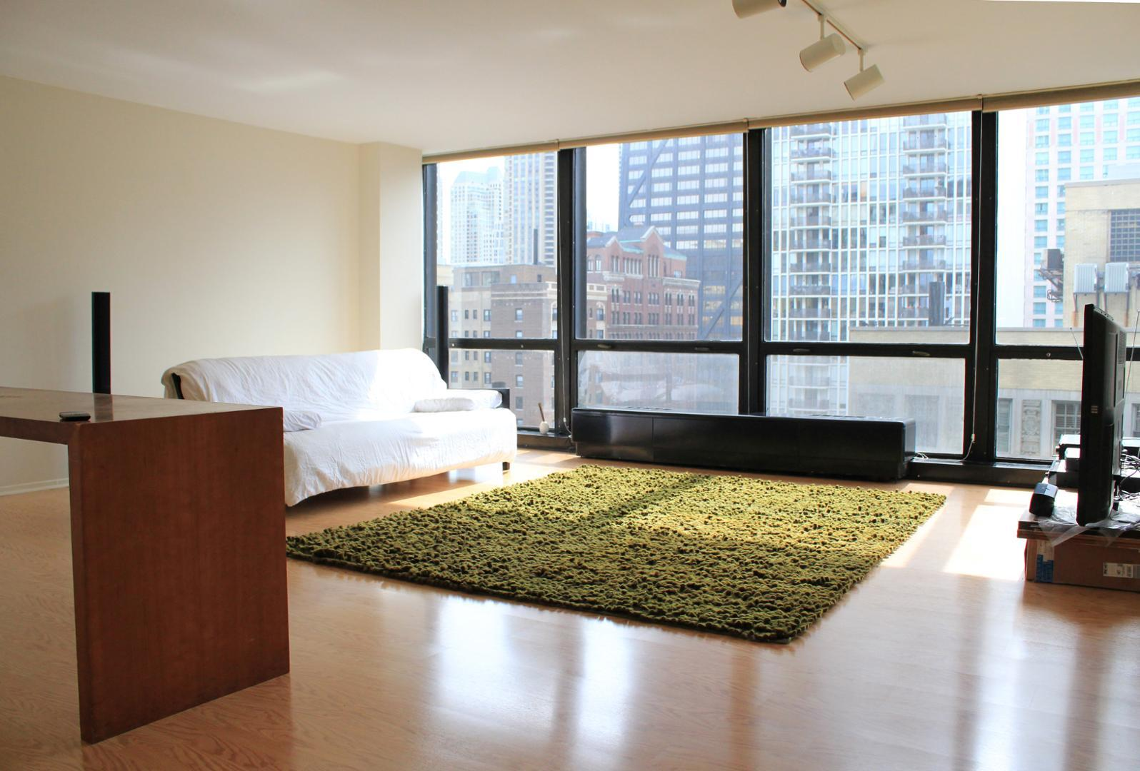 910 N Lake Shore Dr #1718, Chicago, IL - $2,400 USD/ month