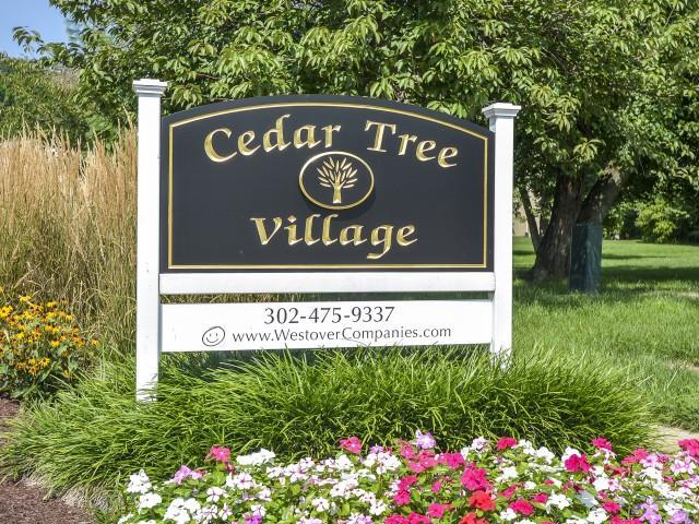 2514 Cedar Tree Dr #102D, Wilmington, DE - 1,079 USD/ month
